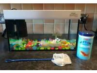Small goldfish starter tank
