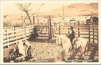 RPPC Fallon Nevada Ranch Scene Cattle Branding 1944