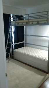 Furnished, locking room w/ bedding, en-suite half bath & WiFi