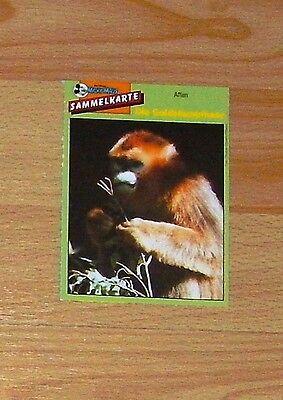 Micky Maus Sammelkarte - Affen - Die Goldstumpfnase (90er)
