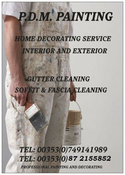 Professional Painter and Decorator available