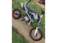 110cc Welsh Pit bike 4 Stroke