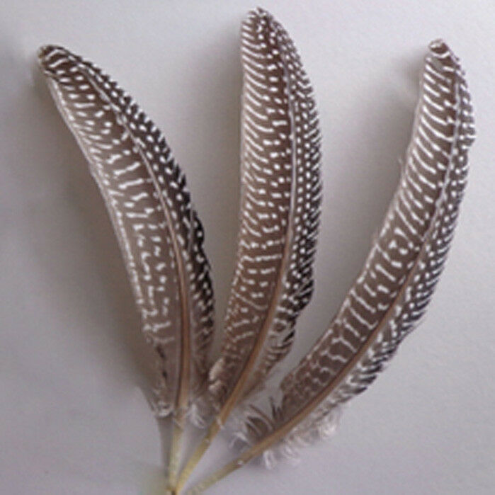 "lot of natural pearl wing feathers wholesale 50//200pcs 6-8/""15-20cm Beautiful"