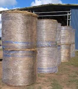 Meadow Hay with Clover Mix round hay bales suitable for Horses Albion Park Shellharbour Area Preview