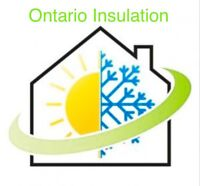 Asbestos and Attic Insulation Removal
