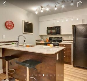 Looking. For room mate FULLY FURNISHED $750