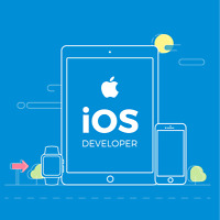 Looking for iOS Developer to replicate an Android App