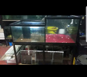 Custom  160 gallon water fall tank/sump/ stand