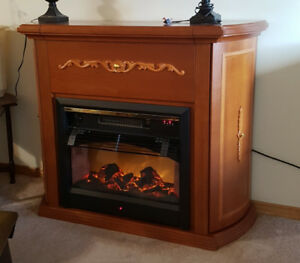 Electric fire place 200 obo