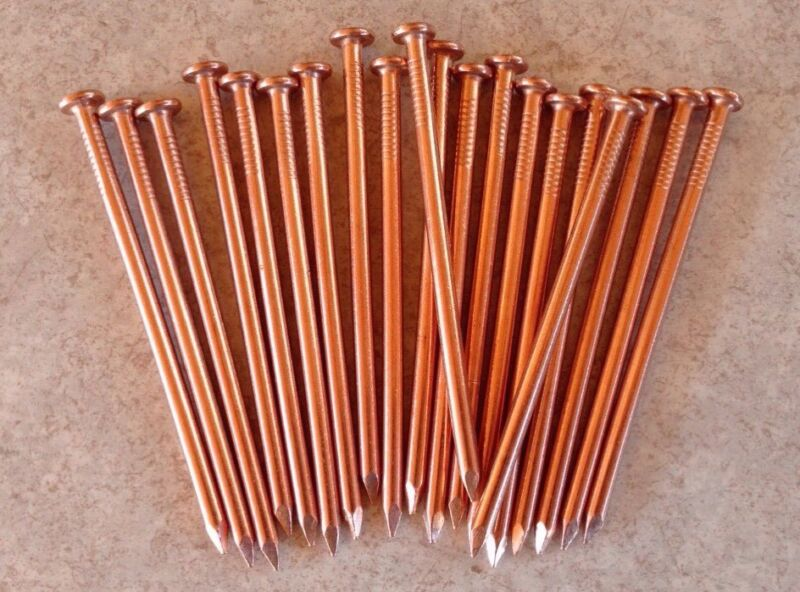 3.5 Inch Copper Nails for Killing Trees, Stumps & Roots - 20 Count