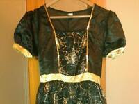 Halloween ladies dress and hat size 12-14