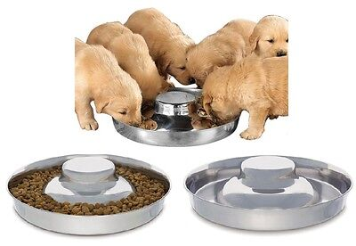 High Quality Stainless Steel Multi Puppy Litter Feeder Dish Bowl   Choose Size
