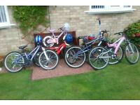 Selection of bikes,family pack