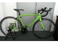 Specialized Allez 2016 54cm Monster Green