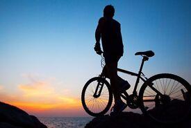 Bicycle Repair, Service and More