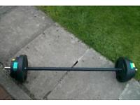 Barbell with weights X 6