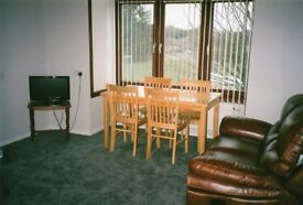 Table and 4 Chairs Solid Wood