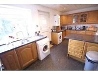 Kitchen cupboards/doors