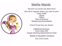 Professional cleaning service WEEKLY/FORTNIGHTLY/ONE OFF cleans available.. plus Garden maintenance