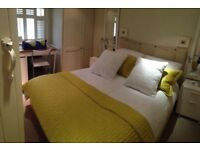 £12 PH Domestic cleaning 5*references!