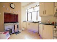 High Gloss Kitchen Plus Appliances