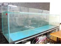 LARGE Fish Tank 7' plus basic stand. 10mm glass. 109 gallons (495 litres)