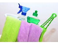 Cleaning and Ironing at your door!!