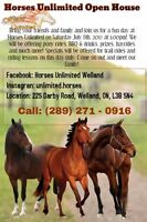 Vendor's wanted for Horses Unlimited Open House