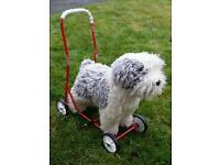 Toddlers walking aid dog!