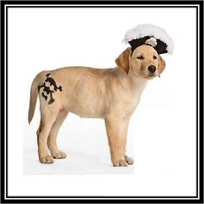 Pirate Hat Halloween Dog Pet Costume Accessory Small (New with Tags) - Too Cute! (Cute Chihuahua Halloween Costumes)