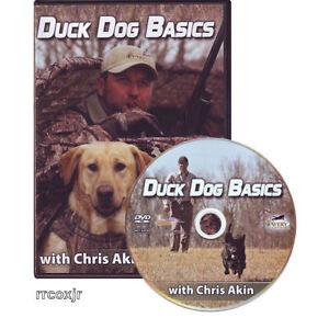 AVERY-GREENHEAD-GEAR-GHG-CHRIS-AKIN-DUCK-DOG-BASICS-RETRIEVER-TRAINING-DVD-NEW
