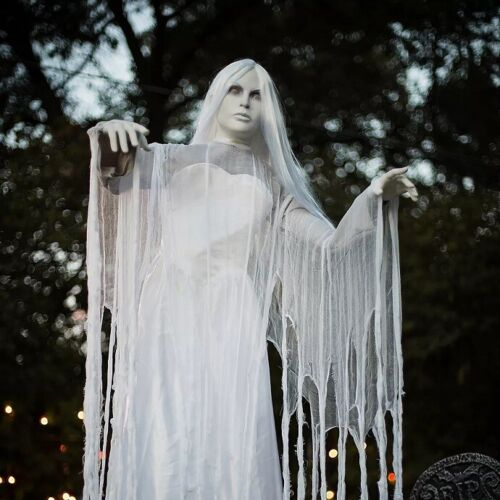 Animated Rising Ghost Woman Halloween Decoration Prop NEW