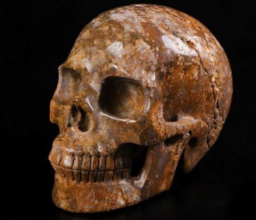 """Huge 5.0"""" LEOPARD SKIN JASPER Hand Carved Crystal Skull"""