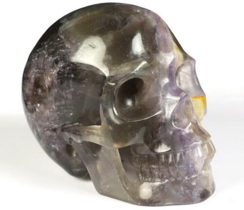 """Huge 5.0"""" FLUORITE Carved Crystal Skull colorful"""