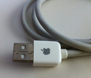 Cable rallonge port USB  Mac