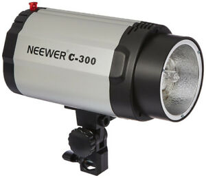 "Two Studio Flash Strobes (300W) with Two Softboxes (20x28"")"