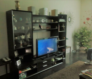 SHELVE/TV UNIT WALL