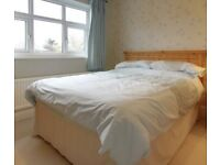 Single bed with mattress - FREE