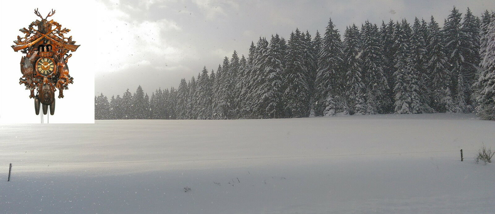 Schwarzwald-Kuckucksuhren