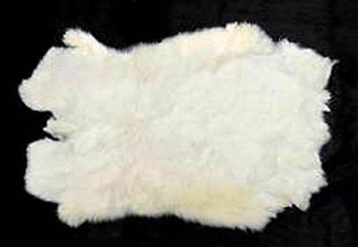 10 REAL NATURAL WHITE GENUINE RABBIT SKIN  hides fur pelt craft rabbits BULK LOT