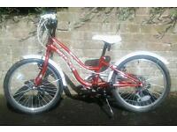 Girls Metallic Red Appollo Bicycle
