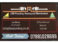 LDM plumbing and heating maintenance