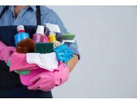 Cleaner / housekeeper looking for job