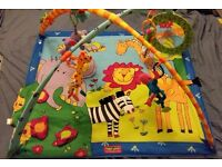 Baby Play Mat/Gym with Lights & Music (Tiny Love Gymini Activity Gym Super Deluxe)
