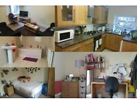 39 Hope Street Lancaster, 2 Double rooms available in a house share, £80 p/week all in