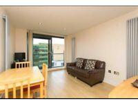 Amazing 2 bedroom apartment in E14 area