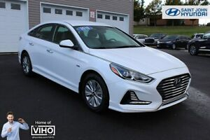 2019 Hyundai Sonata Hybrid BACK UP CAM! HEATED SEATS! WARRANTY!