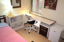 Young professional or student QUIET HOUSE Kardinya Melville Area Preview