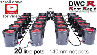 24 POT DWCR Root Rapid DEEP WATER CULTURE System DWC Bubble Bubbler Hydroponics