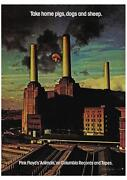 Pink Floyd Animals Album